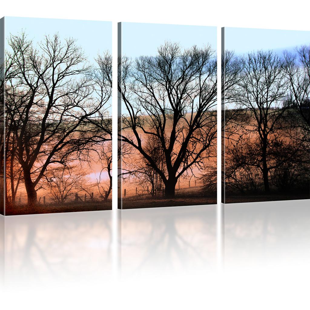 bilder b ume herbst jahreszeiten landschaft wandbilder auf. Black Bedroom Furniture Sets. Home Design Ideas