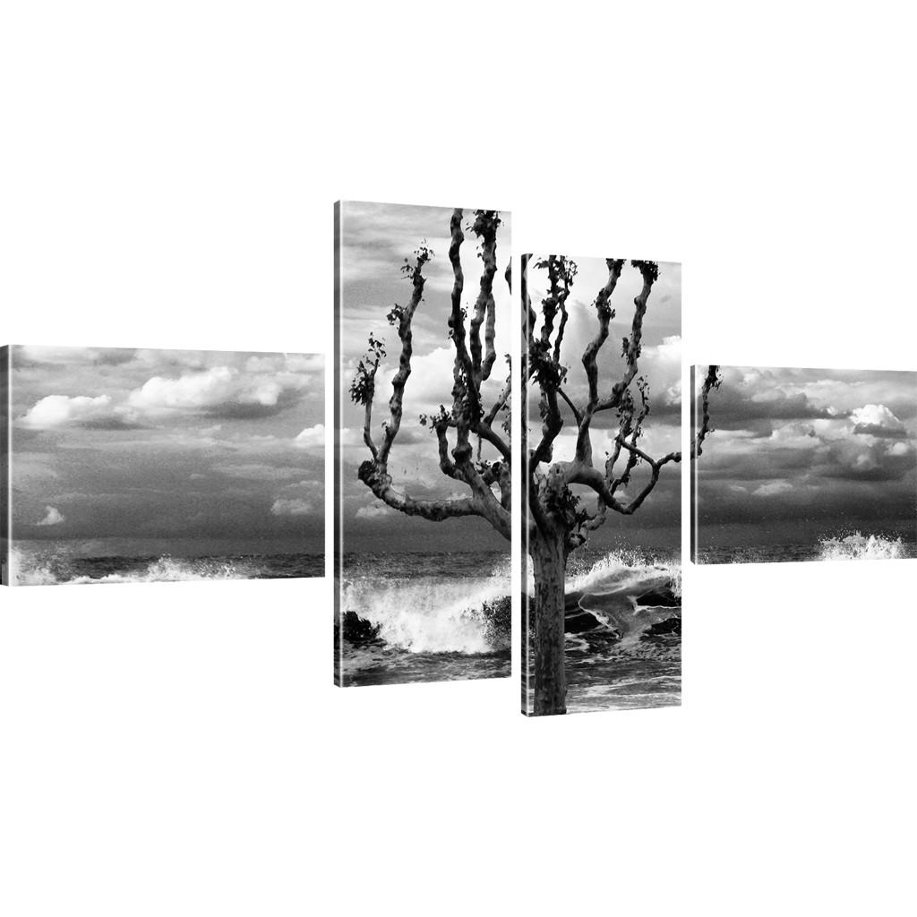 bilder baum an der k ste wandbild auf leinwand ozean kunstdruck natur landschaft ebay. Black Bedroom Furniture Sets. Home Design Ideas