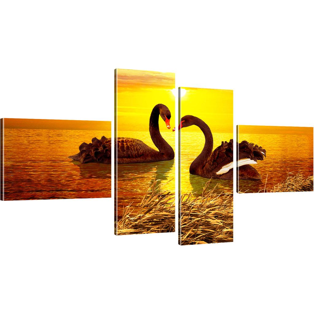 Bilder romantische schw ne im sonnenuntergang wandbilder for Bilder wandbilder