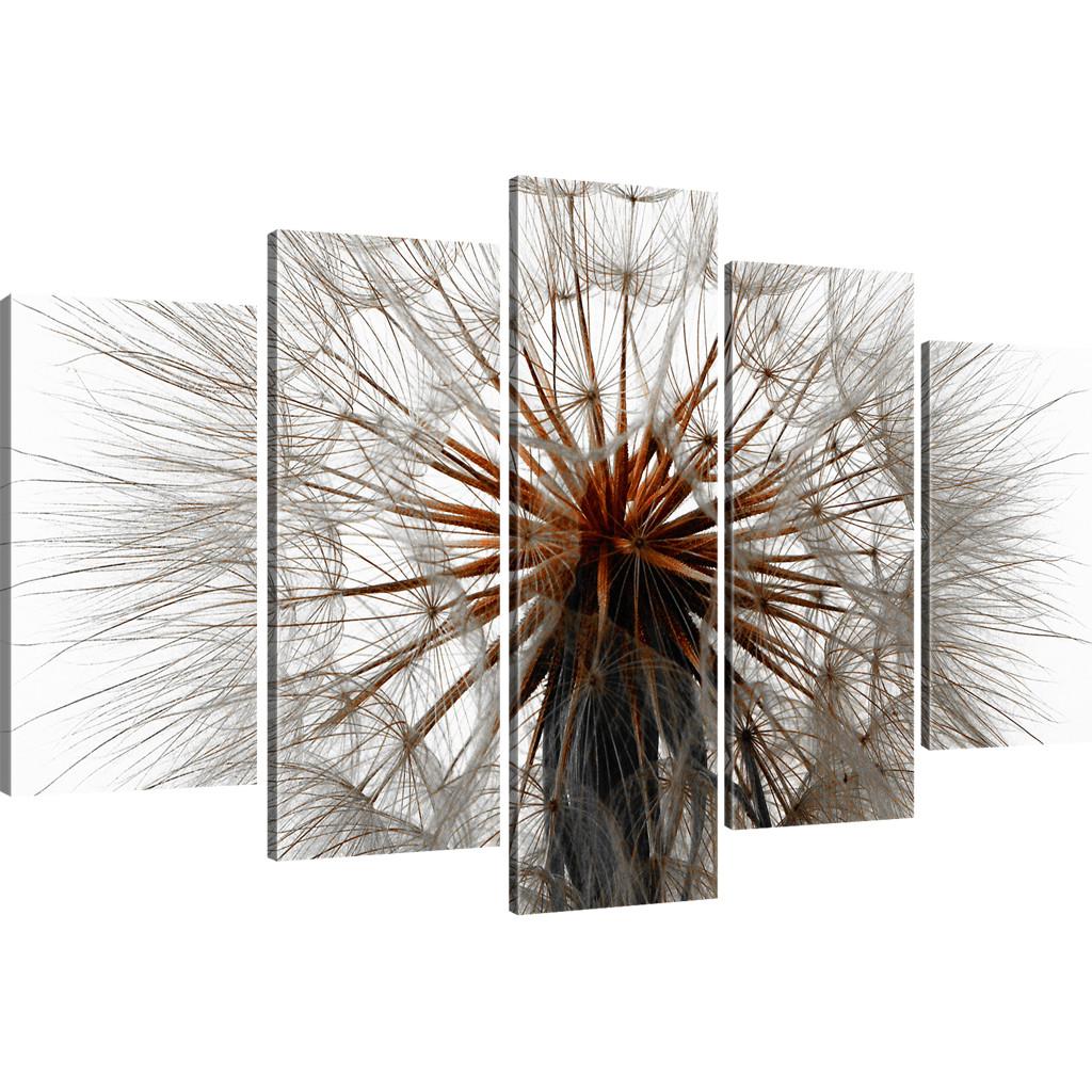 pusteblume dandelion kunstdruck wandbild besser als. Black Bedroom Furniture Sets. Home Design Ideas