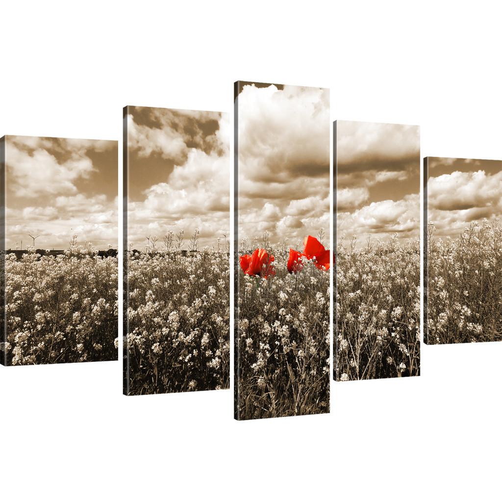 bilder mohnblume auf einer wiese wandbilder auf leinwand landschaft leinwandbild ebay. Black Bedroom Furniture Sets. Home Design Ideas