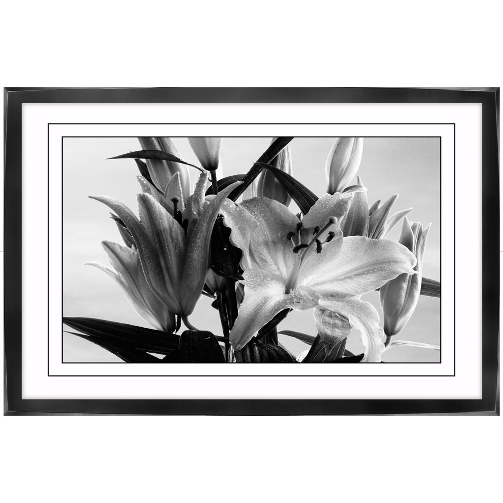 Poster-auf-Leinwand-mit-Rahmen-Lilie-Blume-Kunstdruck-Plaxiglas
