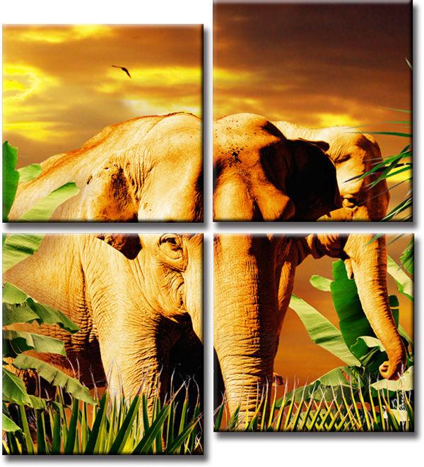 afrika pyramide palme bilder auf leinwand natur bild ebay. Black Bedroom Furniture Sets. Home Design Ideas