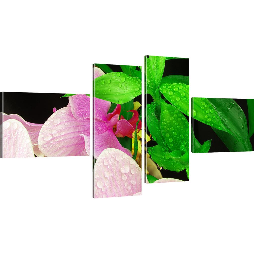 bilder orchideen bilder auf leinwand blumen kunstdruck natur leinwandbild rose s ebay. Black Bedroom Furniture Sets. Home Design Ideas