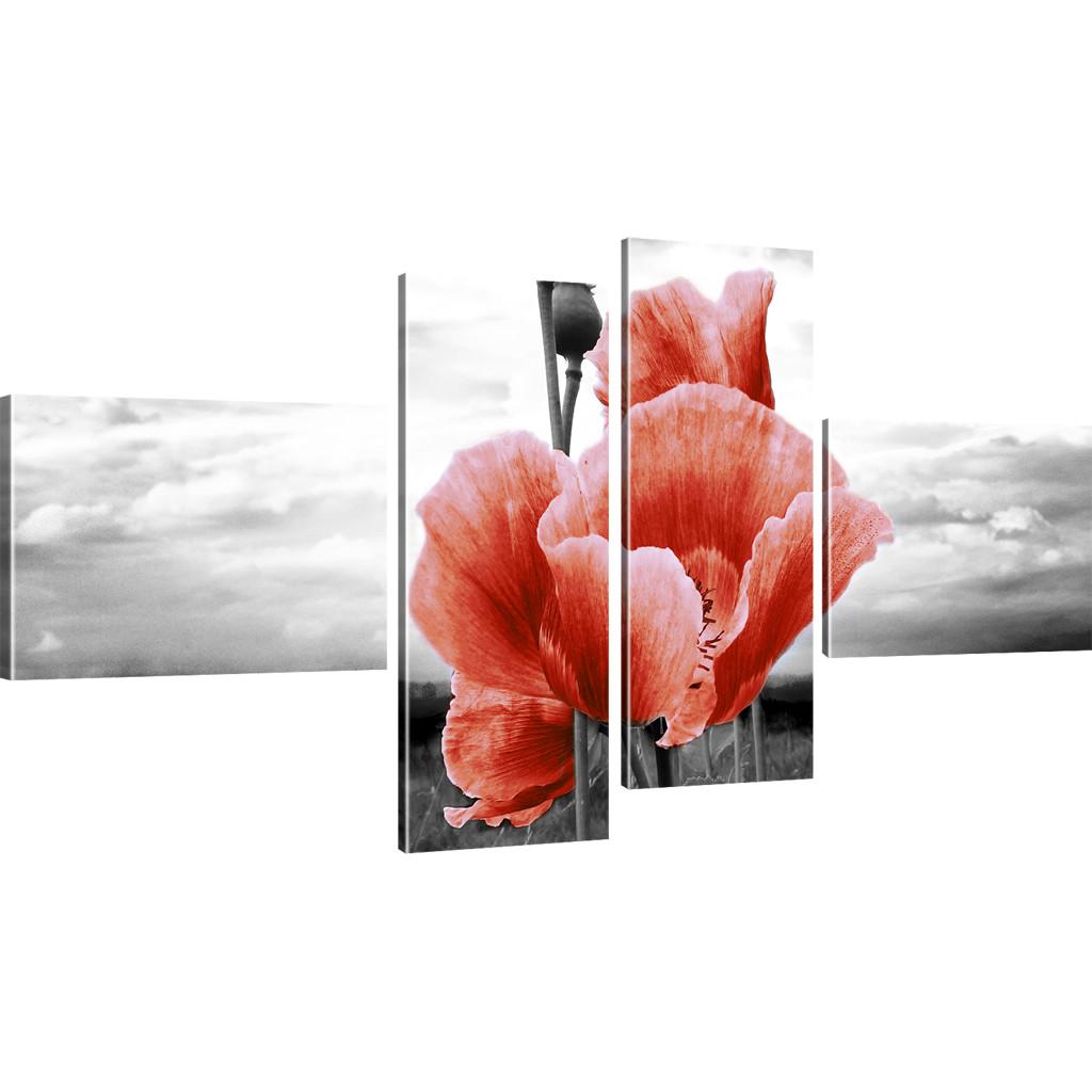 bilder mohnblume auf der wiese bilder auf leinwand blumen. Black Bedroom Furniture Sets. Home Design Ideas